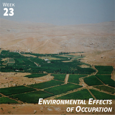 Week 23: Environmental Effects of the Occupation