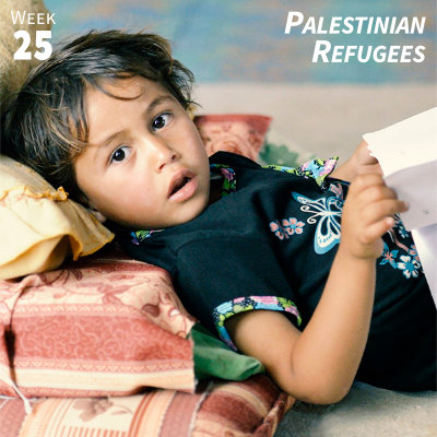 Week 25: Palestinian Refugees