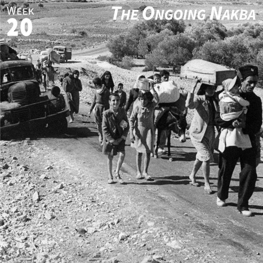 Week 20: The Ongoing Nakba
