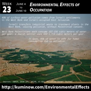 Week 23: Environmental Effects of Occupation Newsletter