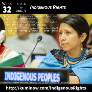Week 32: Indigenous Rights Newsletter