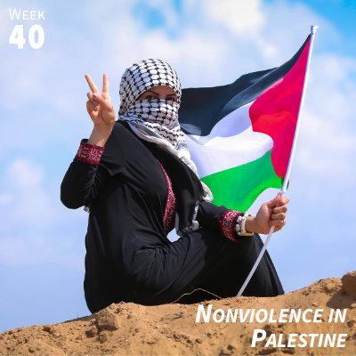 Week 40: Nonviolence in Palestine