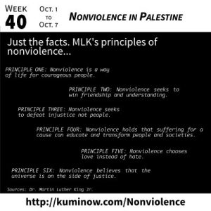 Just the Facts: Nonviolence in Palestine